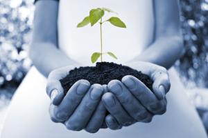 sustentabilidade pessoal